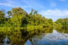 Sikt av floden Arkivbild