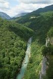 Sikt av floden Tara och omgivning Arkivbild