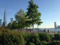 Sikt av Freedom Tower från Hudson River Park Arkivbilder