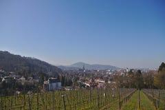 Sikt av Freiburg im Breisgau från en vingård royaltyfria foton