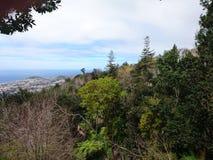 Sikt av Funchal Arkivfoton