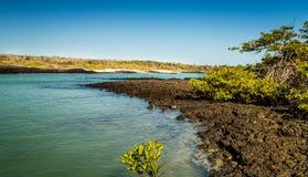 Sikt av Galapagosen Royaltyfri Fotografi