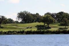 Sikt av golfbanan över en sjö Arkivfoto