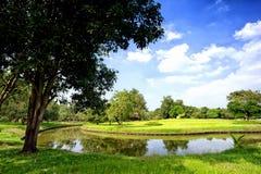 Sikt av gröna träd i parkera Arkivfoton