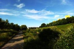Sikt av grönskan utanför staden på en solig dag royaltyfria foton