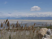 Sikt av Great Salt Lake, nr stadslake salt utah Royaltyfri Bild