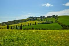 Sikt av gräsplanfält på solnedgången i Tuscany Fotografering för Bildbyråer