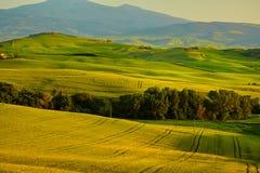 Sikt av gräsplanfält på solnedgången i Tuscany Arkivbild