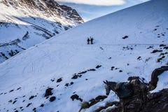 Sikt av höga berg Arkivfoto