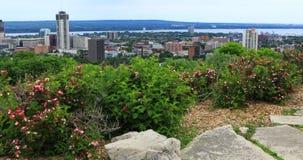 Sikt av Hamilton, Kanada, horisont med blommor i förgrund 4K stock video