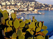 Sikt av hamnen i Nice, Frankrike Arkivfoton
