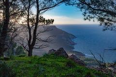 Sikt av havet från skogen arkivfoto