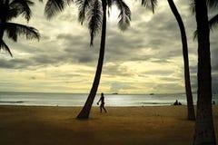 Sikt av havet och solnedgånghimlen på stranden i Hawaii Förenta staterna, Augusti 2012 med mannen och palmträd silhouetted i th Arkivbilder