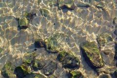 Sikt av havsbottnen till och med det mest rena vattnet Arkivfoto