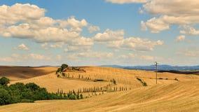 Sikt av huset med cypressträd i ett fält i den tuscan regionen fotografering för bildbyråer