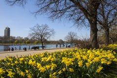 Sikt av Hyde Park på våren Royaltyfri Bild