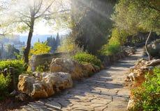 Sikt av Jerusalem från Mountet of Olives fotografering för bildbyråer