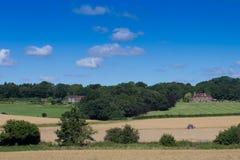 Sikt av jordbruksmarkUK-sommar Royaltyfri Fotografi