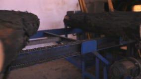 Sikt av journalen som fortskrider transportbandet på möblemangfabriken arkivfilmer