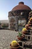 Sikt av kaktusträdgården, gardin de kaktus Royaltyfri Fotografi