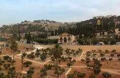 Sikt av Kidron Valley med trädgården av nationer för Gethsemane kyrka allra arkivfoton
