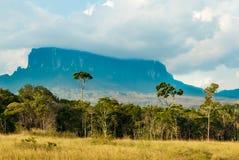 Sikt av Kukenan Tepui, Gran Sabana, Venezuela Fotografering för Bildbyråer