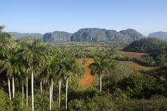 Sikt av kullar och berg i Vinales, Kuba Fotografering för Bildbyråer