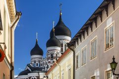 Sikt av kupolerna av Alexander Nevsky Cathedral, Tallinn, Estland arkivbilder