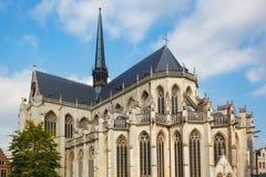 Sikt av kyrkan för St Peter ` s av Leuven, flamländska Brabant, Belgien Arkivfoton