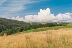 Sikt av lantliga höstackar Royaltyfri Fotografi