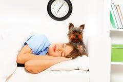 Sikt av lilla Yorkshire Terrier med att sova pojken Royaltyfria Foton