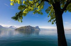 Sikt av Lucerne sjön med schweiziska fjällängar i vår Arkivfoton