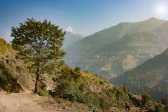 Sikt av Machapucharen på den Annapurna baslägertreken, Nepal Arkivfoto