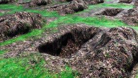 Sikt av malde grävde och tomma gravar Arkivbild
