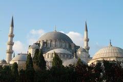Sikt av moskén för SÃ-¼leymaniye i höst, Istanbul, Turkiet Arkivfoto