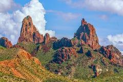 Sikt av mulaöramaxima i September stor nationalpark f?r b?jning S?dra Texas USA arkivbilder