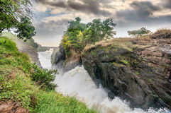 Sikt av Murchison Falls på den Victoria Nile flodnationalparken Arkivfoto