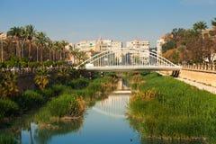 Sikt av Murcia. Segura flod och Puente del Sjukhus Arkivbilder