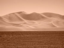 Sikt av Nevada Desert i sepiasignal Arkivfoton