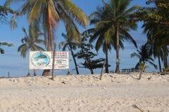 Sikt av palmträd på en strandsemesterort Arkivbilder