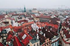Sikt av röda tak i Prague Royaltyfri Foto