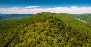 Sikt av Ridgen och dalappalachiansna från stora Schloss, West Virginia royaltyfri fotografi