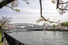 Sikt av sakura träd vid floden och bron från Sakuranomi Arkivbild