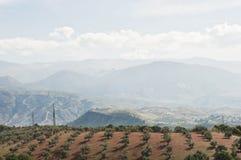 Sikt av Sierra Nevada Arkivbilder
