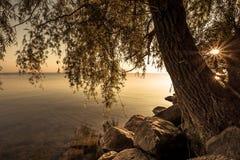 Sikt av Simcoe sjön under soluppgång Royaltyfri Bild