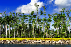 Sikt av sjön och Arkivbild