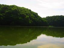 Sikt av sjön och den gröna skogen fotografering för bildbyråer