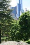 Sikt av skyskraporna från den New York Central Park royaltyfri fotografi