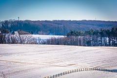 Sikt av snö-täckte lantgårdfält i lantliga York County, Pennsylva royaltyfri foto