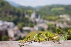 Sikt av staden Lourdes - murgröna på fästningväggen på bakgrund fristaden av vår dam av Lourdes Royaltyfria Bilder